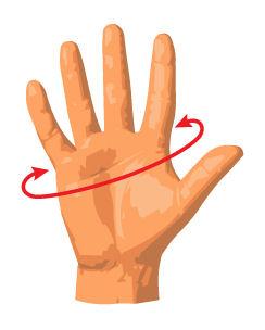 Divein Glove Measurements